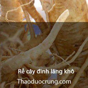 Rễ cây đinh lăng khô