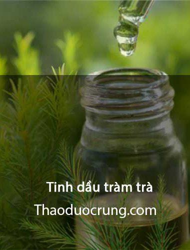 Tinh dầu tràm trà